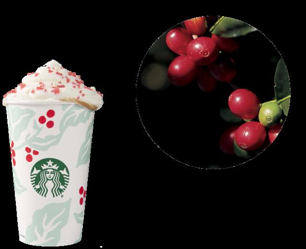 beverage-inspo-circle-flora-1.png