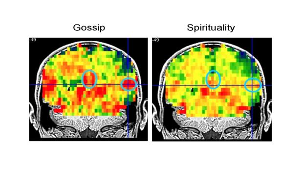 mind-reading-mri-7.jpg