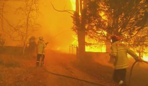 Australia declares emergency as wildfires continue to rage