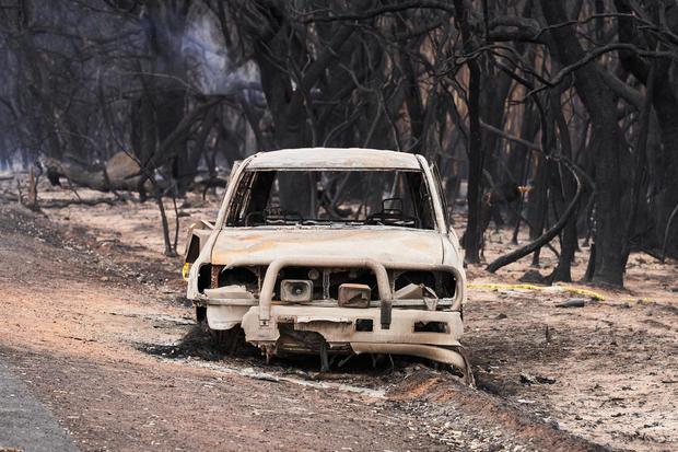 Bushfire Aftermath On Kangaroo Island