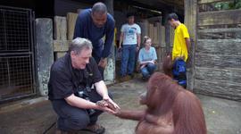 60 Minutes Presents: Whitaker's Wildlife Tour