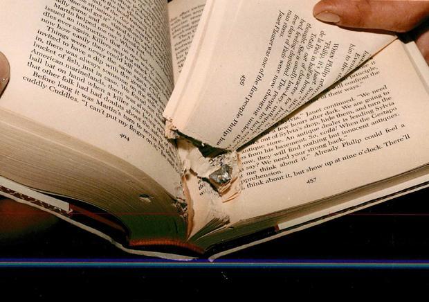 ltt-pelley-book.jpg