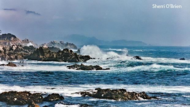 the-california-coast-near-davenport-beach-sherri-obrien-b-620.jpg