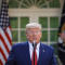 Trump coronavirus task force update Sunday, March 29
