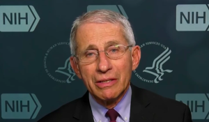Fauci says coronavirus deaths will keep rising as new cases stabilize