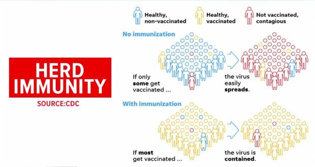 herd-immunity.jpg