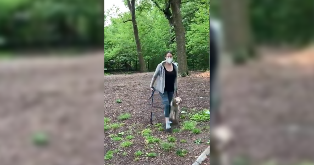 "Central Park ""Karen"": Viral video shows white woman calling cops on black man because he asked her to leash her dog thumbnail"