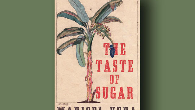 the-taste-of-sugar-cover-liveright-660.jpg