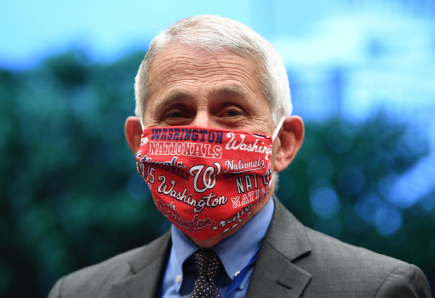 Anthony Fauci — Nationals face mask