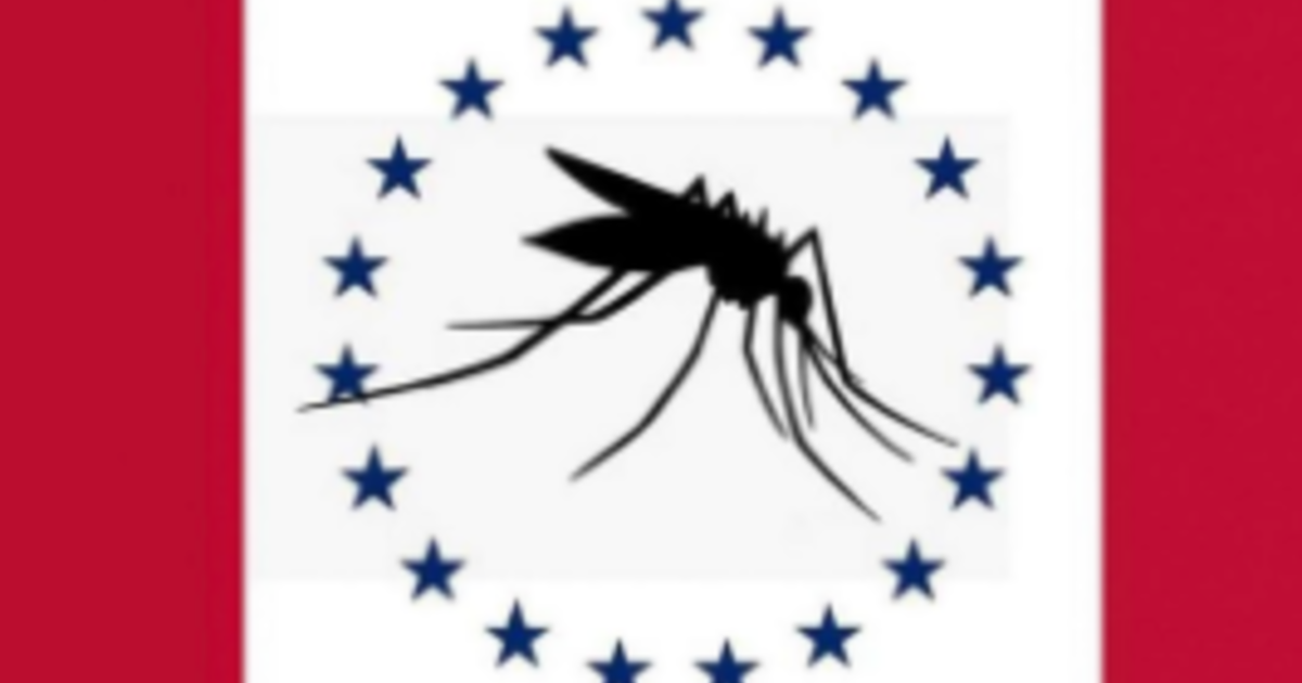 Mississippi man who created mosquito-themed state flag says design was a joke