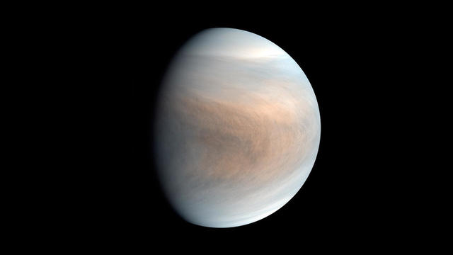 Venus Possible Life