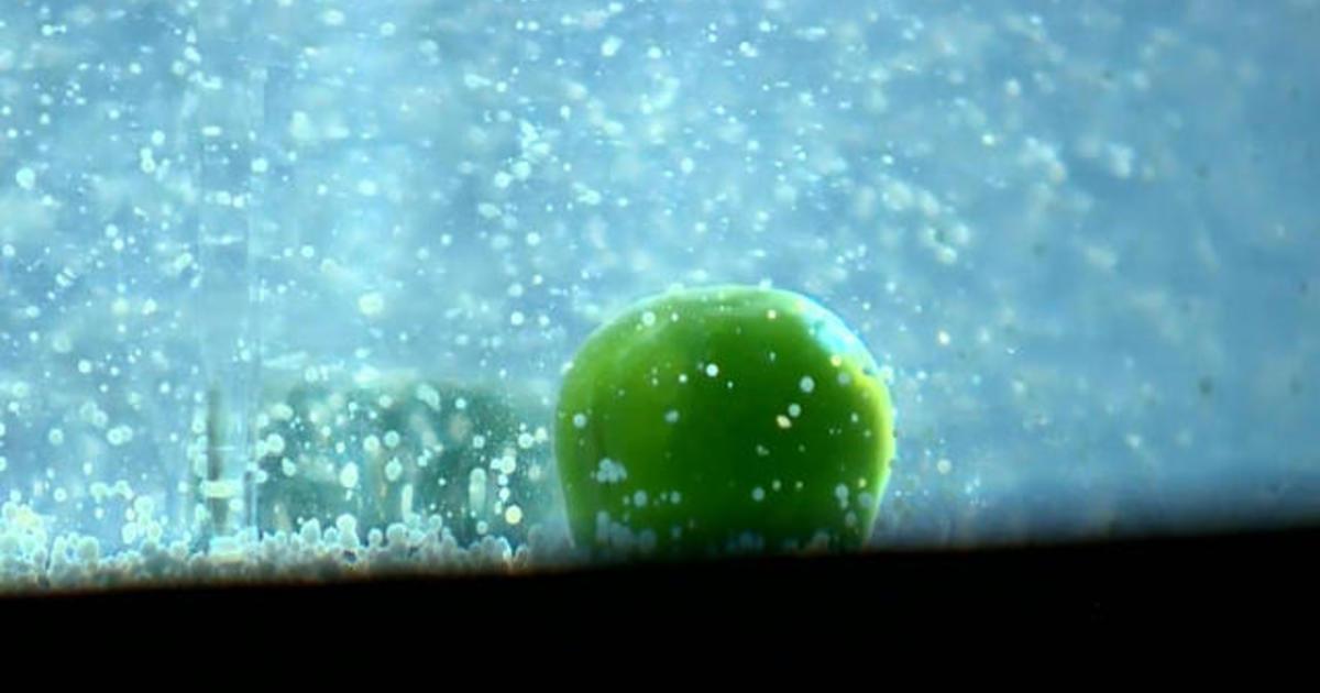 U.K. company makes environmentally-friendly plastic out of peas