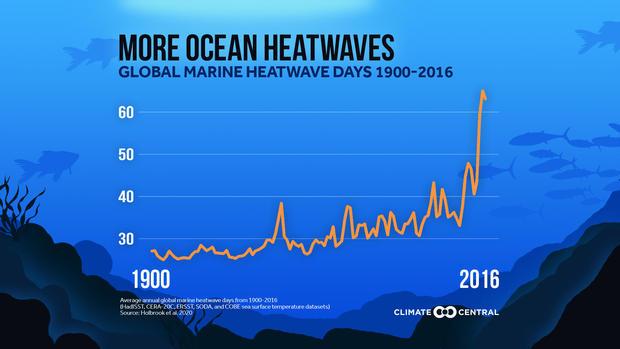 ocean-heat-waves.jpg