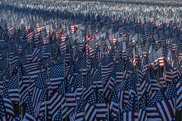 Field of flags on the National Mall