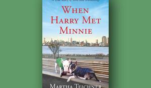 when-harry-met-minnie-cover-660.jpg