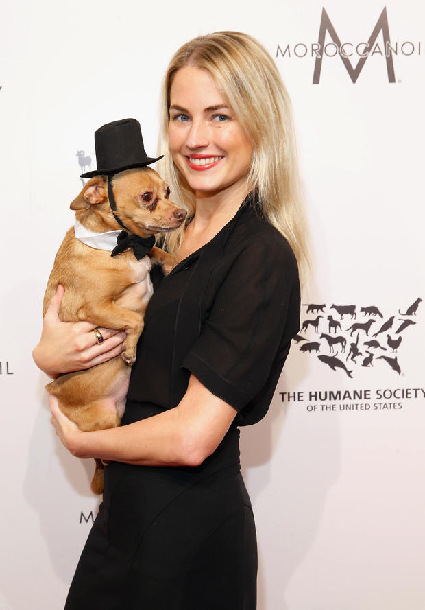 2016 Humane Society Of The United States To The Rescue! New York:  Saving Animal Lives
