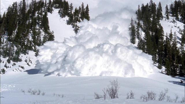 avalanche31920-655285-640x360.jpg
