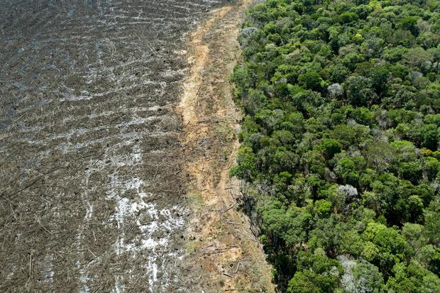 BRAZIL-ENVIRONMENT-DEFORESTATION