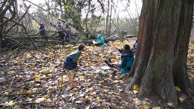 forest-school-620.jpg