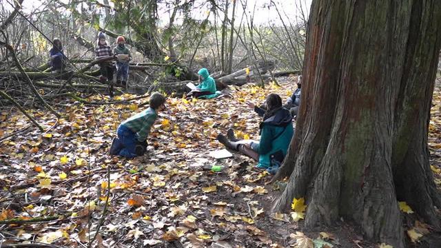 forest-school-1280.jpg
