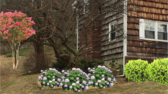 scitech-0328-gardening3-640x360.jpg