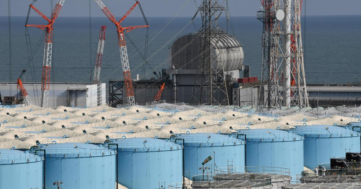 Protests as Japan says it will dump radioactive water from crippled Fukushima nuclear plant into the Pacific