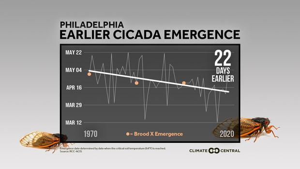 2021cicadas-local-philadelphia-en-title-lg.jpg