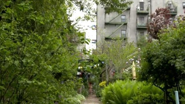 cbsn-fusion-community-gardens-decorate-new-york-citys-urban-landscape-thumbnail-715696-640x360.jpg