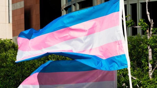 cbsn-fusion-the-science-behind-the-transgender-athlete-debate-analysis-carol-ewing-garber-thumbnail-739686-640x360.jpg