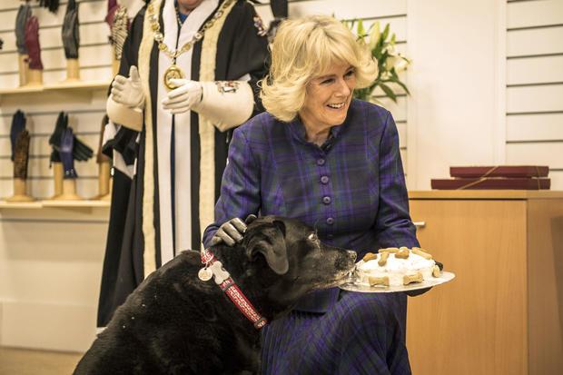 Duchess Of Cornwall Visits Dents Factory