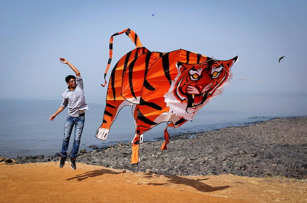 FILE PHOTO: A participant flies a tiger shaped kite during the International Kite Festival in Mumbai