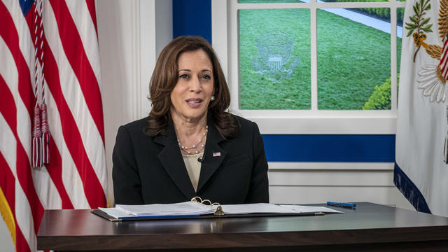 Vice President Harris Leads Session During Virtual Covid-19 Summit