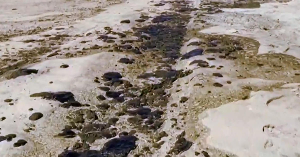 """Massive oil spill coats Southern California beaches: """"A potential ecological disaster"""""""