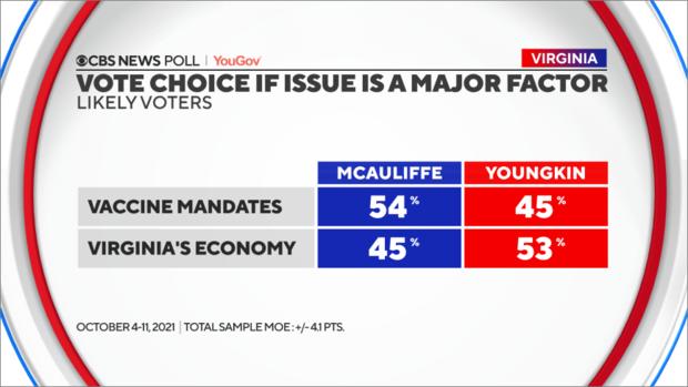 vote-choice-factors.png